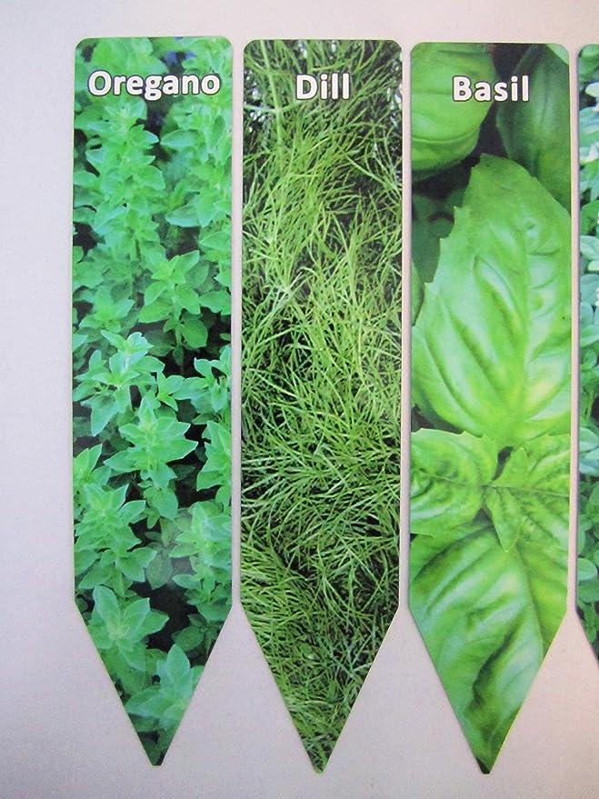 Planta de jardín marcadores Juego de 6 marcadores de aluminio ...