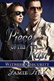 Pieces of the Past (Witness Security Book 1)
