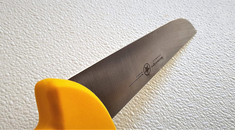 Amazon.com: STERNSTEIGER 5 PCS BUTCHER SET KNIVES (13 MONTHS ...