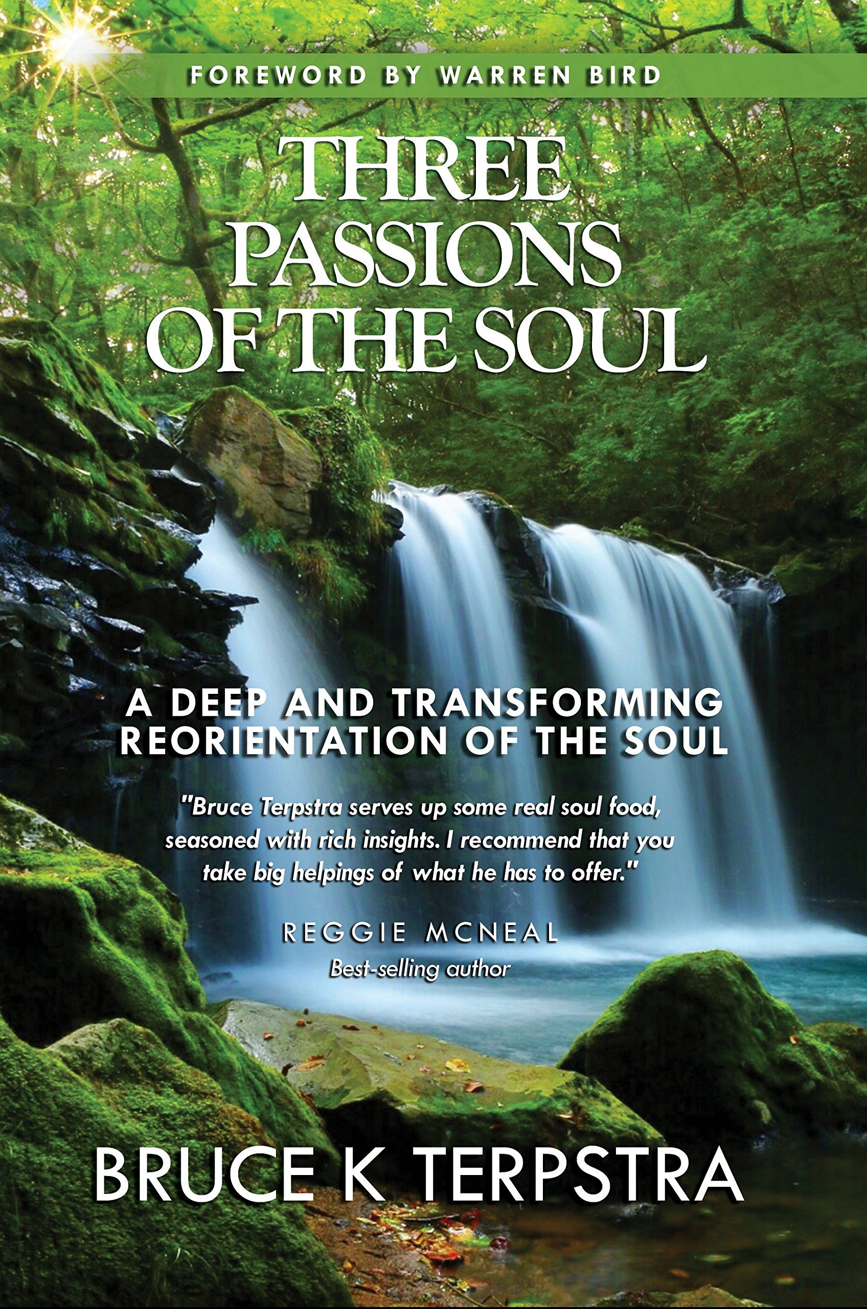 Three Passions of the Soul: A Deep and Transforming Reorientation of ...