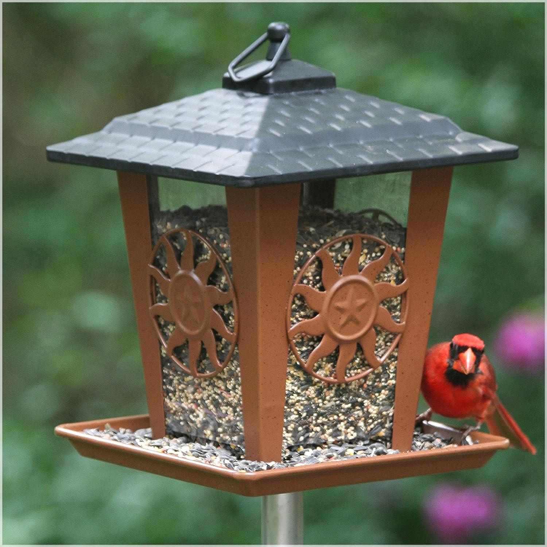 Perky-Pet Comedero para pájaros con tejado y Bandeja-Dispensador de Comida Resistente y Anti-Ardillas-Alimentador Farol Decorativo con Sol y ...