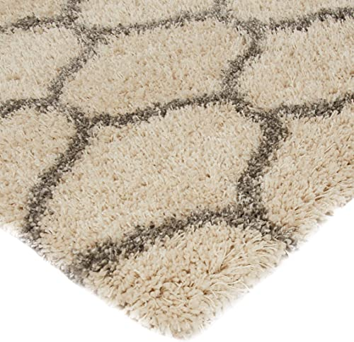 Amazon Basics Modern Plush Moroccan Trellis Shag Area Rug