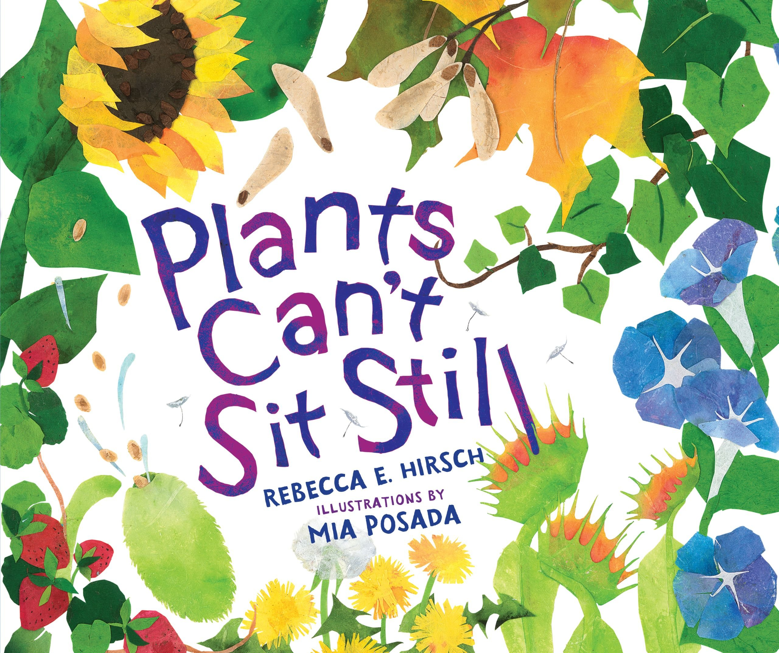 Plants Can't Sit Still (Millbrook Picture Books) ebook