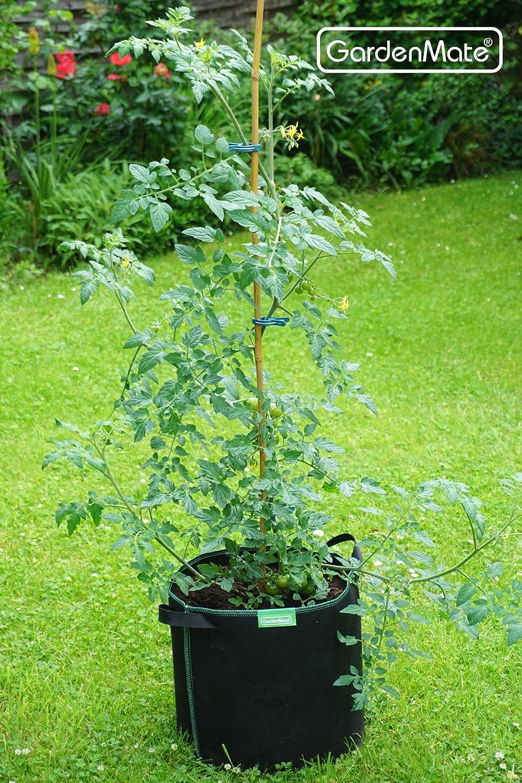 Greenline GardenMate 3X Sacchi per Piante di Tessuto Non Tessuto 20L