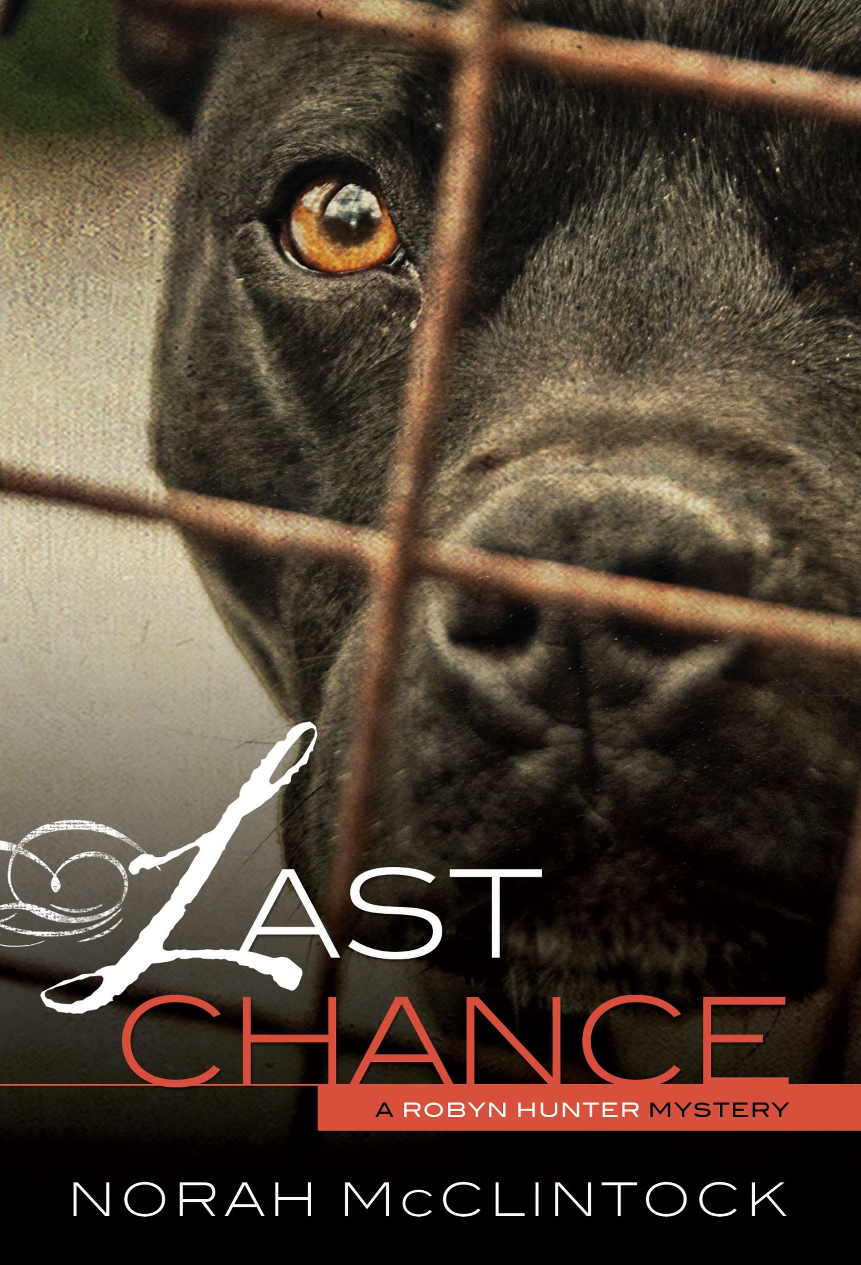 Read Online Last Chance (Robyn Hunter Mysteries) ebook