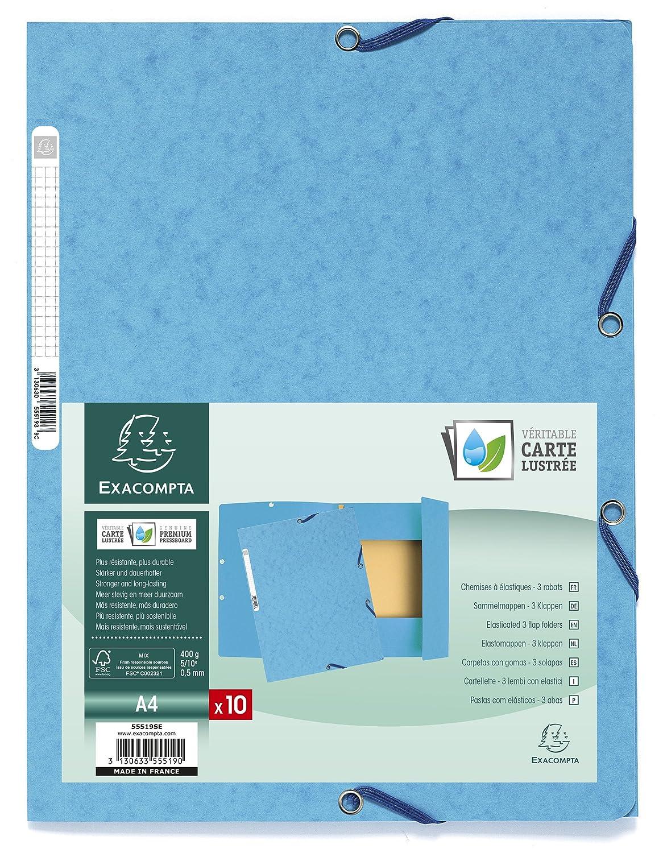pacco da 10 Exacompta Europa Cartelletta A4 24 x 32 blu