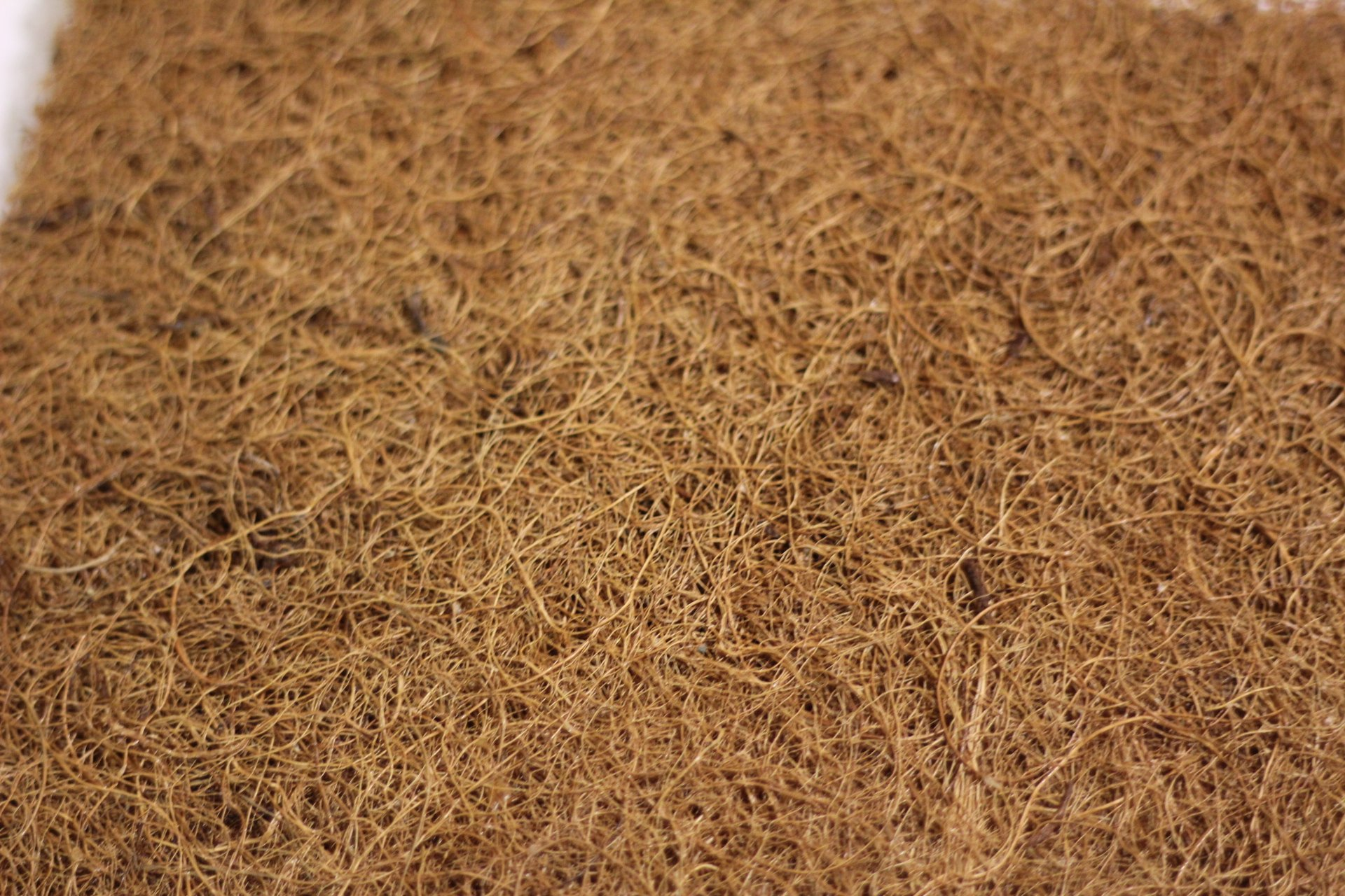 Root-On Coco Mat, 8'' x 8'' by 1'' Thick, 100 Pack