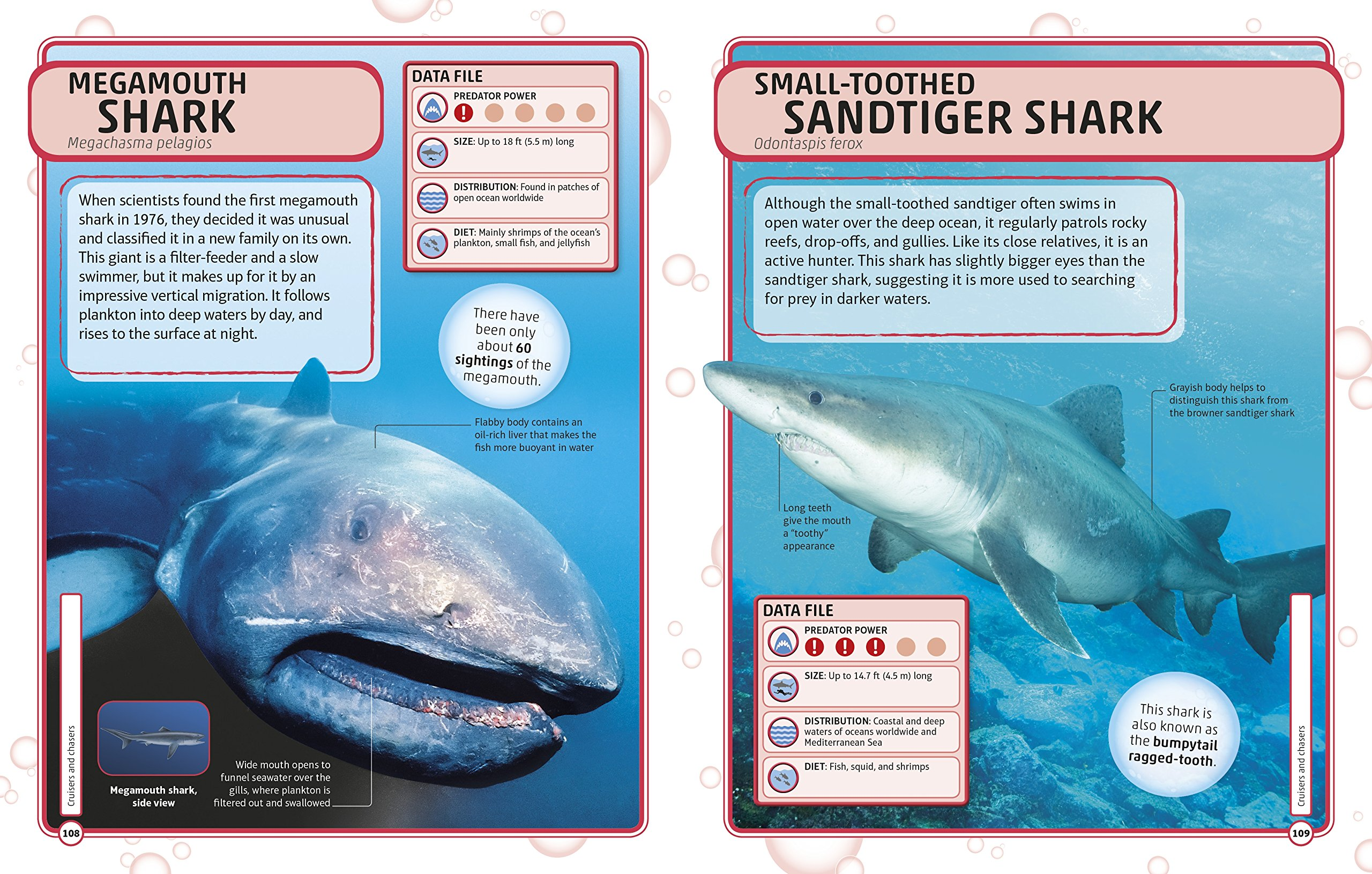 Sharks and Other Deadly Ocean Creatures Visual Encyclopedia by DK Children (Image #5)