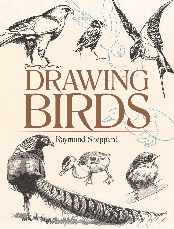 Drawing Birds (Dover Art Instruction) pdf