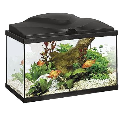 Askoll - Acuario con sistema de iluminación LED y filtro Aqua 20, negro, 40