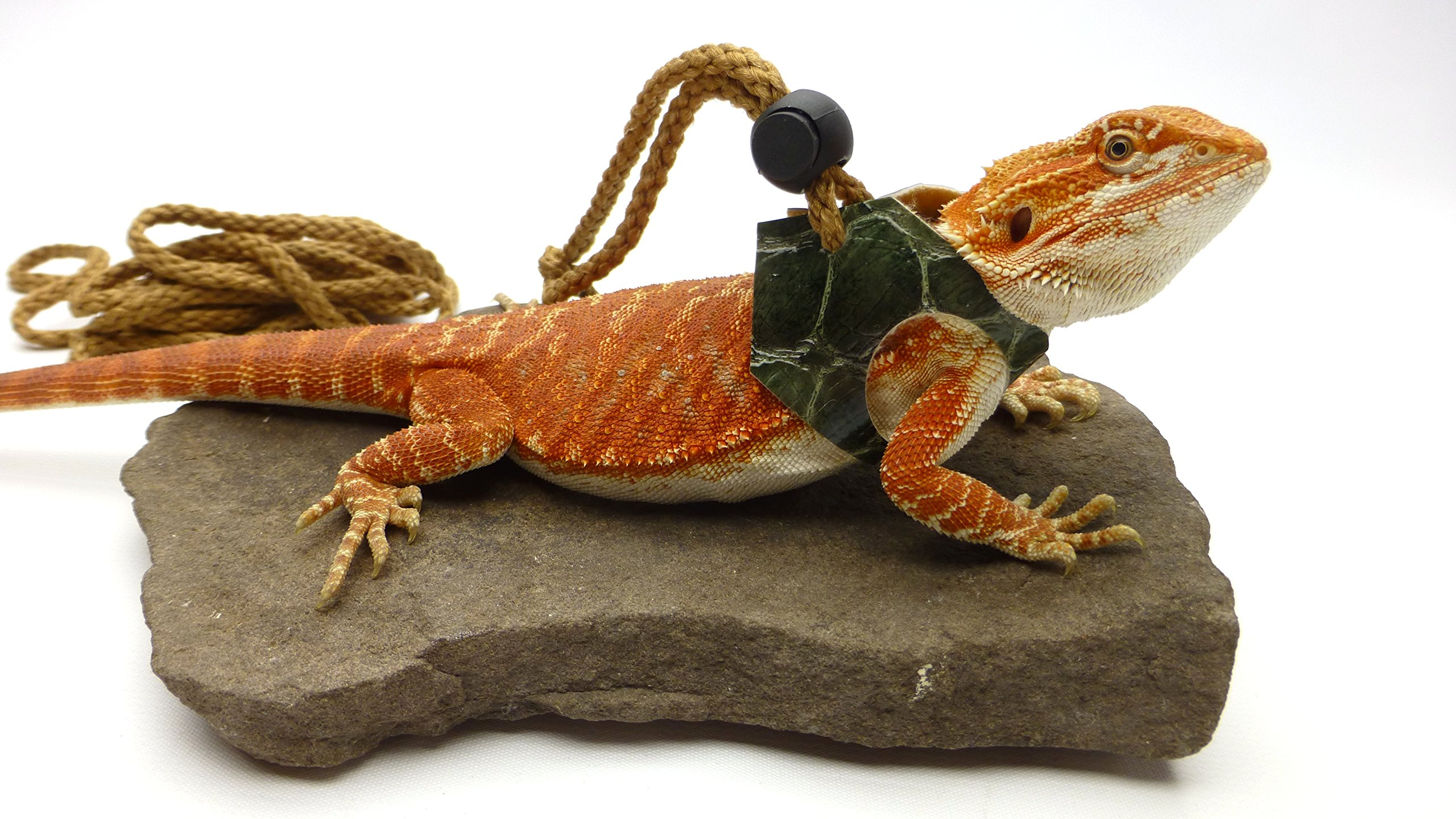 Ogle Lizard Leash, Limited Edition Green Scales (medium size)