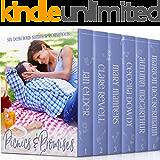 Picnics & Promises: Six Delicious Summer Romances (English Edition)