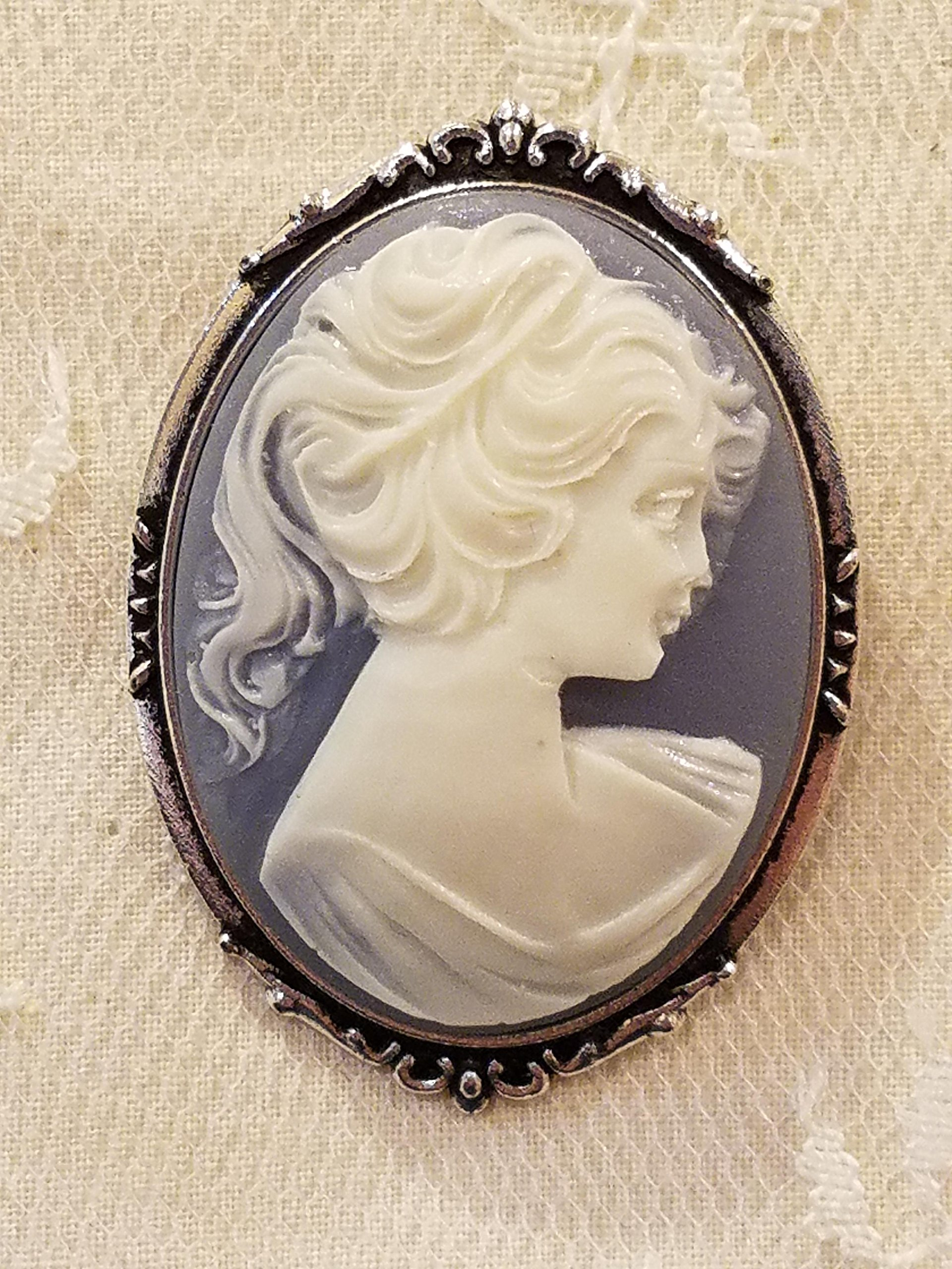 Blue and White Cameo Brooch Resin Silvertone Frame