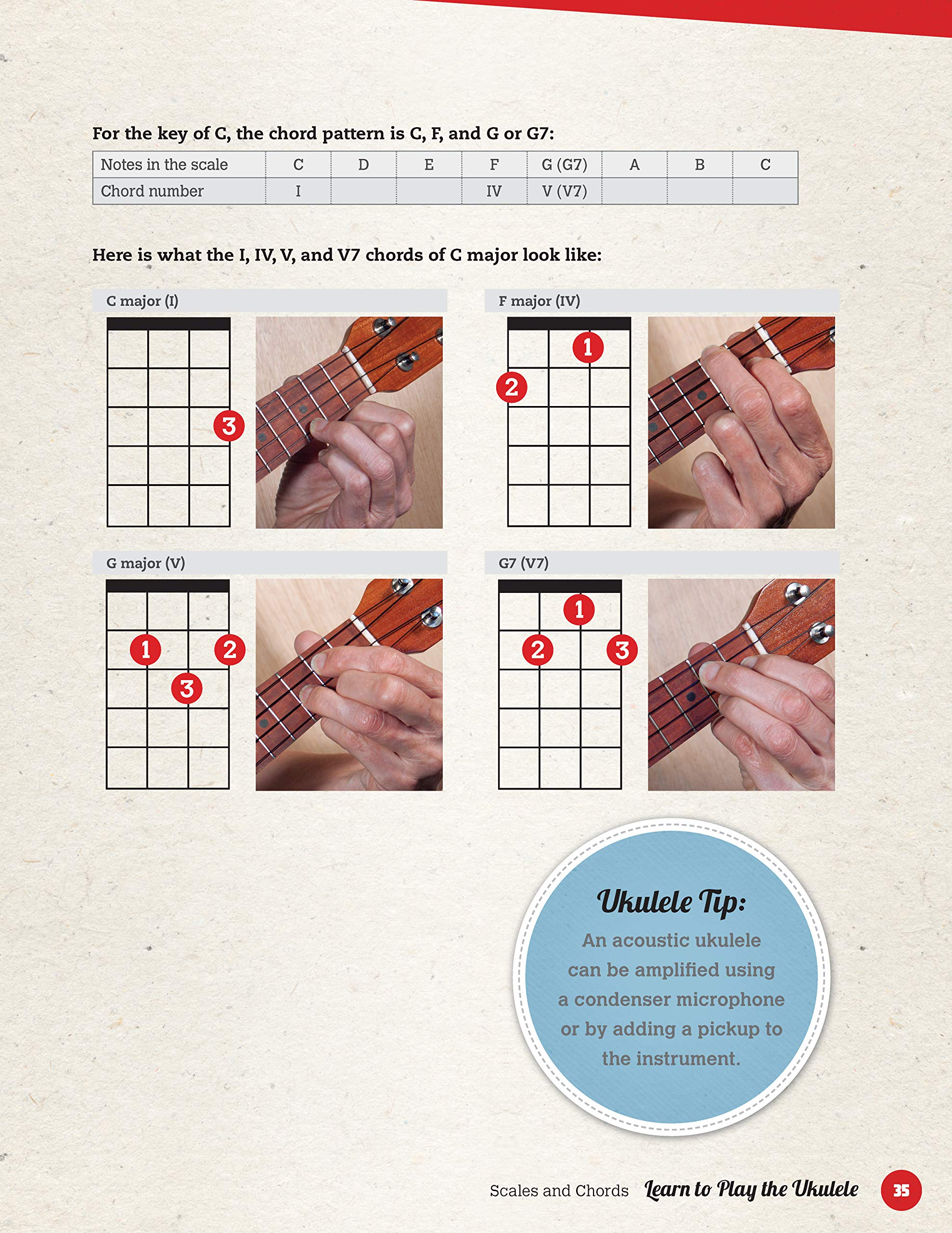 Amazon com: Learn to Play the Ukulele: A Simple and Fun