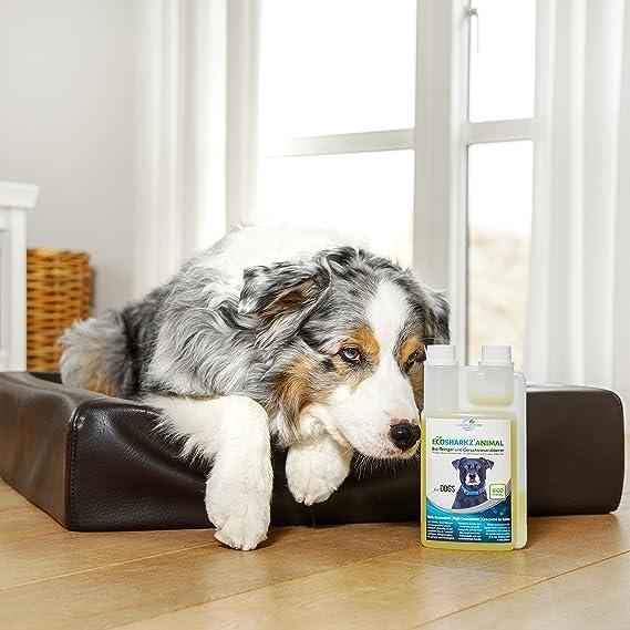 Ecosharkz neutralizador de olores en Spray para Perros - eliminador Natural de olores - Concentrado de Alto Rendimiento para Eliminar el Olor a orina ...