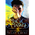 Magic Unmasked: A Conspiracy of Magic Prequel Novella