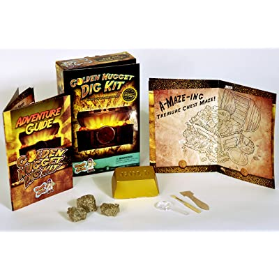 Discover with Dr. Cool Golden Nugget Dig Kit - Excavate Real Specimens!: Toys & Games