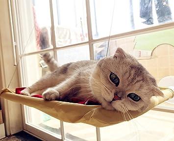Amazon.com: yinyina ventosa gato hamaca cama de gato ventana ...