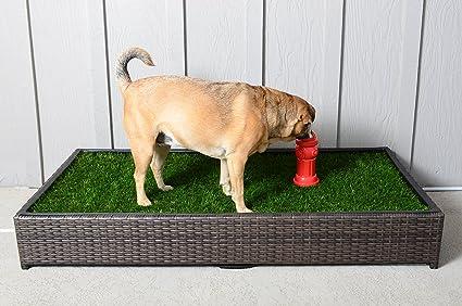 Amazon large porch potty standard pet housebreaking potties large porch potty standard solutioingenieria Gallery