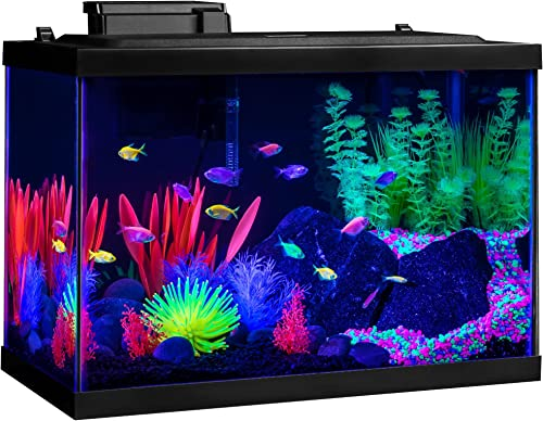 GloFish-Aquarium-Kit-Fish-Tank-20-gallon-with-LED-Lighting-and-Filtration-Included
