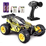 GamePath Remote Control Car - 2.4Ghz Fast Toy Car for Kids 1:22 High Speed Racing RC Cars with 2 Rechargeable Batteries…