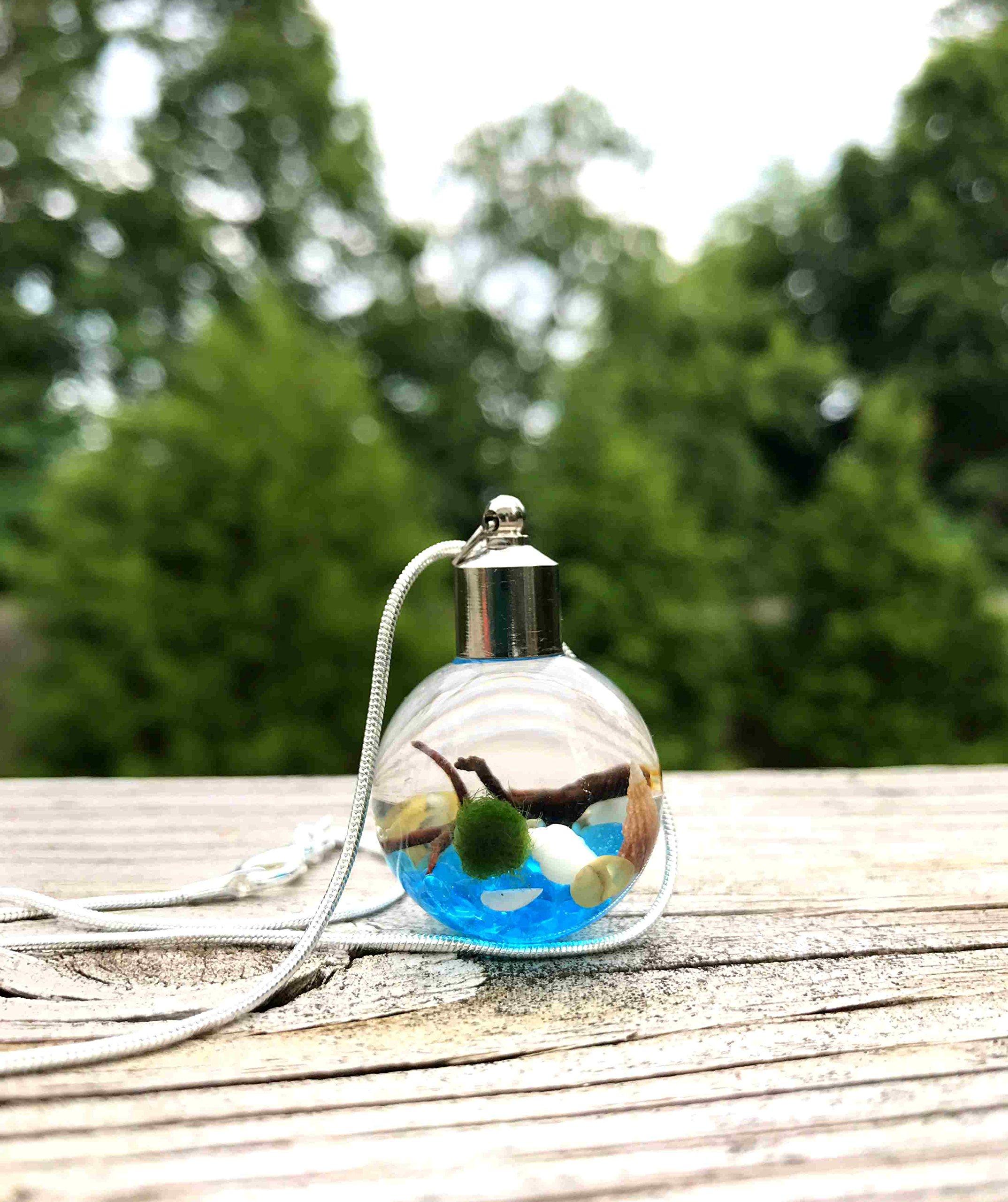 Marimo Moss Ball Necklace Live Terrarium Necklace Wearable Plant Necklace Plant Fashion Accessories - Sky Blue