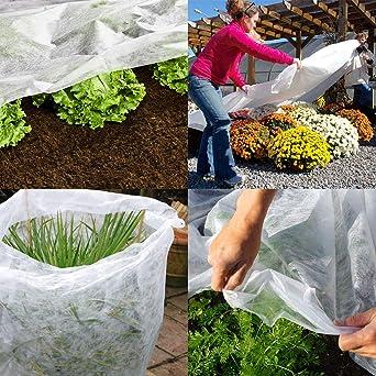 Tela protectora para plantas del jardín en invierno Elixir contra el frío, la helada y el viento, 2 m de ancho, 5 a 50 m: Amazon.es: Industria, empresas y ciencia