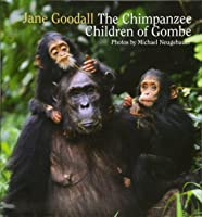 Chimpanzee Children Of