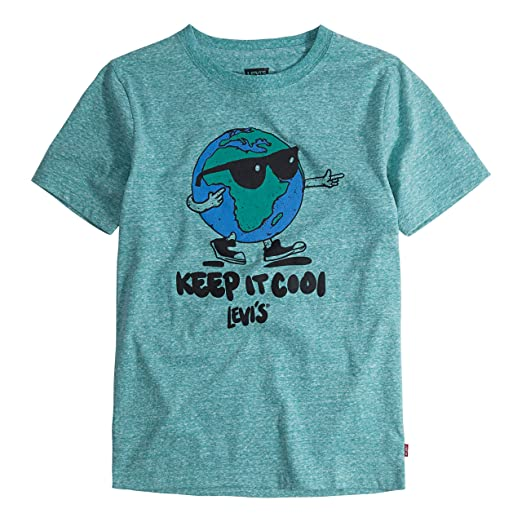 bda43842 Levi's Boys' Toddler Graphic T-Shirt, Alhambra Snow ...