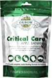 OXBOW Critical Care Apple Banana Animal Supplement Assist Feeding Formula 454g