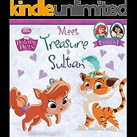 Palace Pets: Meet Treasure and Sultan: 2 Books in 1! (Disney Storybook (eBook))