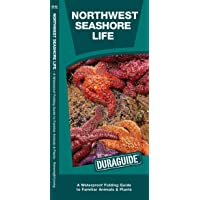 Northwest Seashore Life: A Waterproof Folding Guide to Familiar Animals & Plants