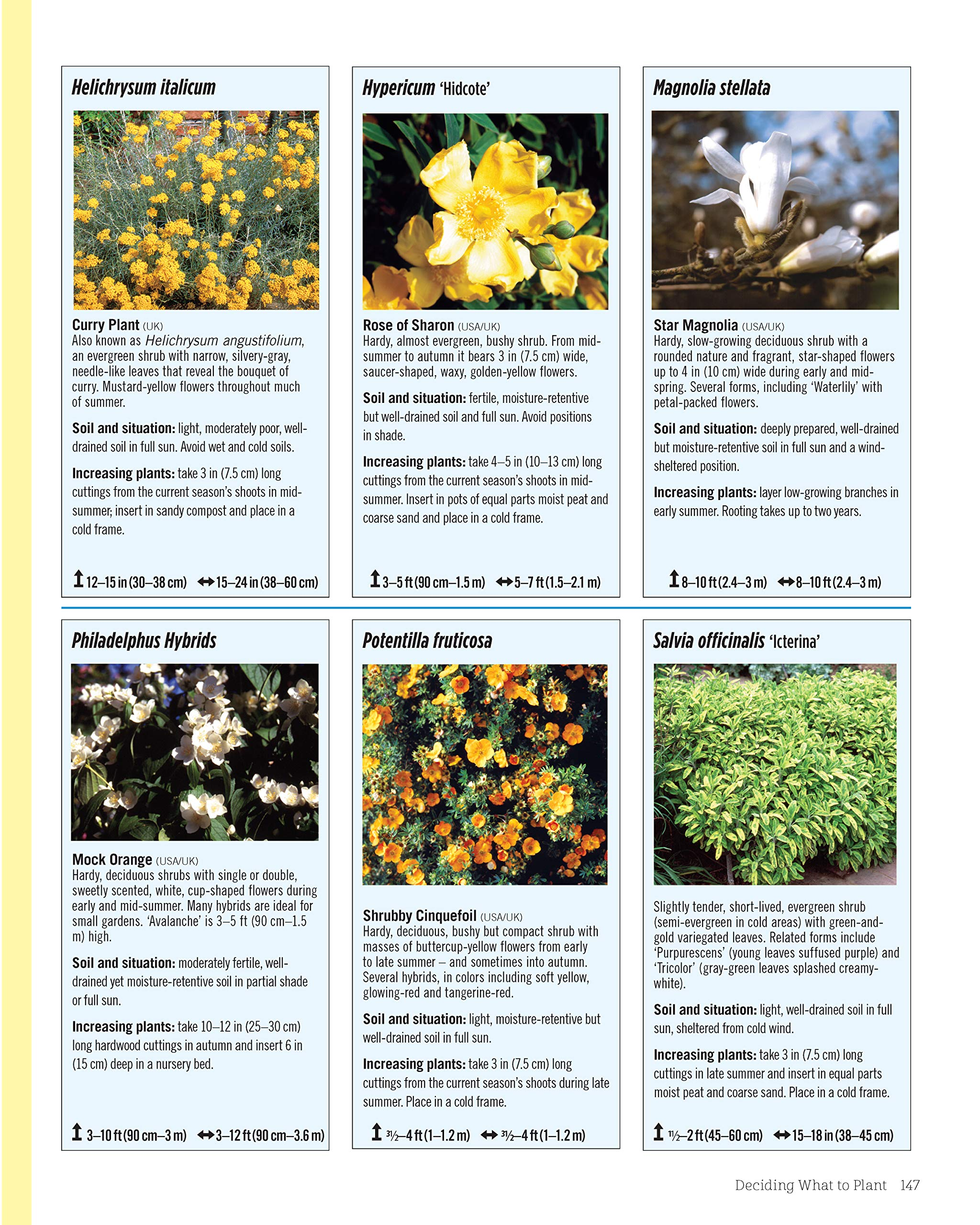The Abundant Flower Gardener: Design and Grow a Fabulous Flower and Vegetable Garden: Amazon.es: Squire, David, Bridgewater, Alan: Libros en idiomas extranjeros