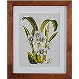 "Modern Purple Flower Print, Weathered Brown Frame, 14.25"" x 17.25"""