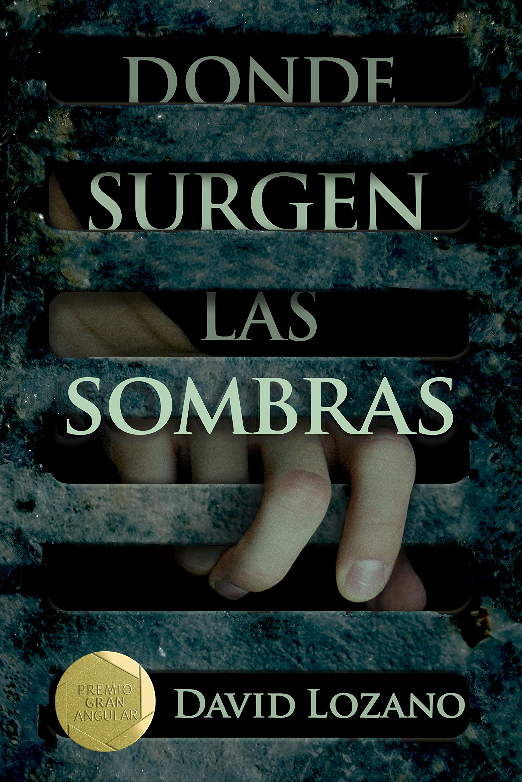 Donde Surgen Las Sombras Amazon Co Uk Lozano David 9788467596854 Books