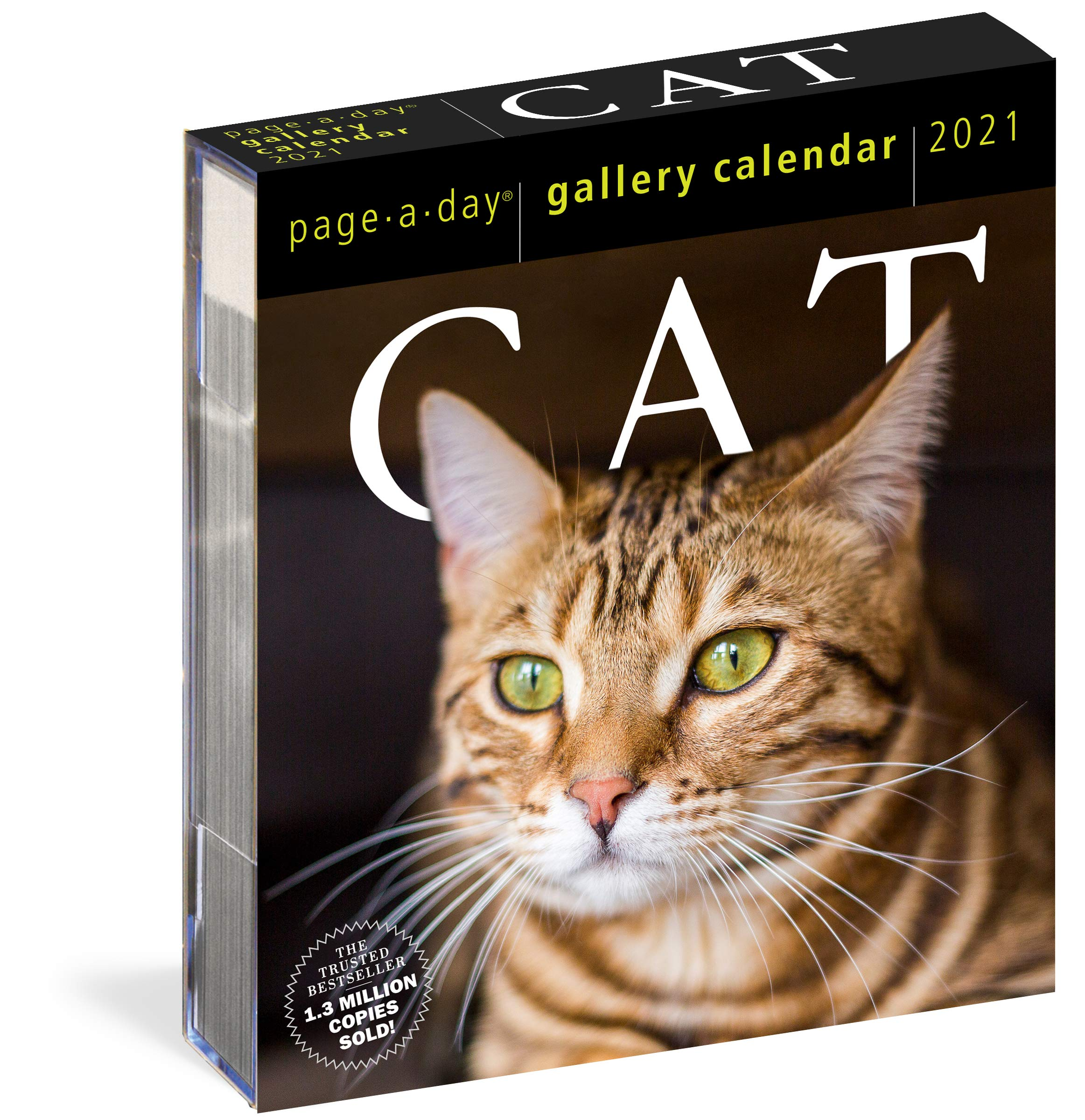 Amazon.com: Cat Page A Day Gallery Calendar 2021 (9781523508921