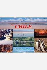 Dear Chile Kindle Edition