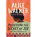 Possessing the Secret of Joy (The Color Purple Collection Book 3)