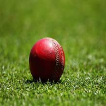 opinions on cricket
