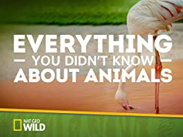 Everything You Didn't Know About Animals