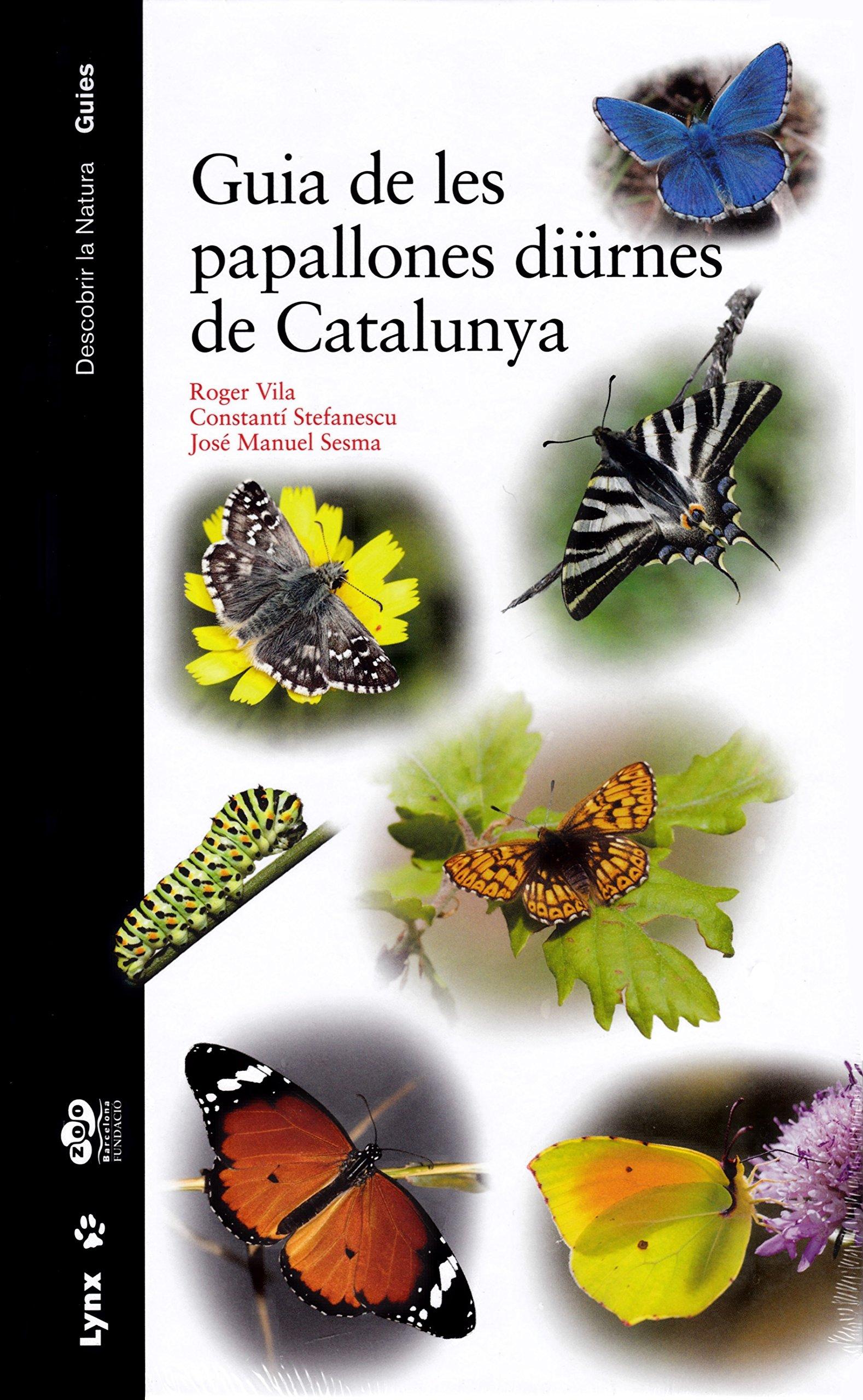 Guia de les papallones diürnes de Catalunya Descobrir la Natura ...