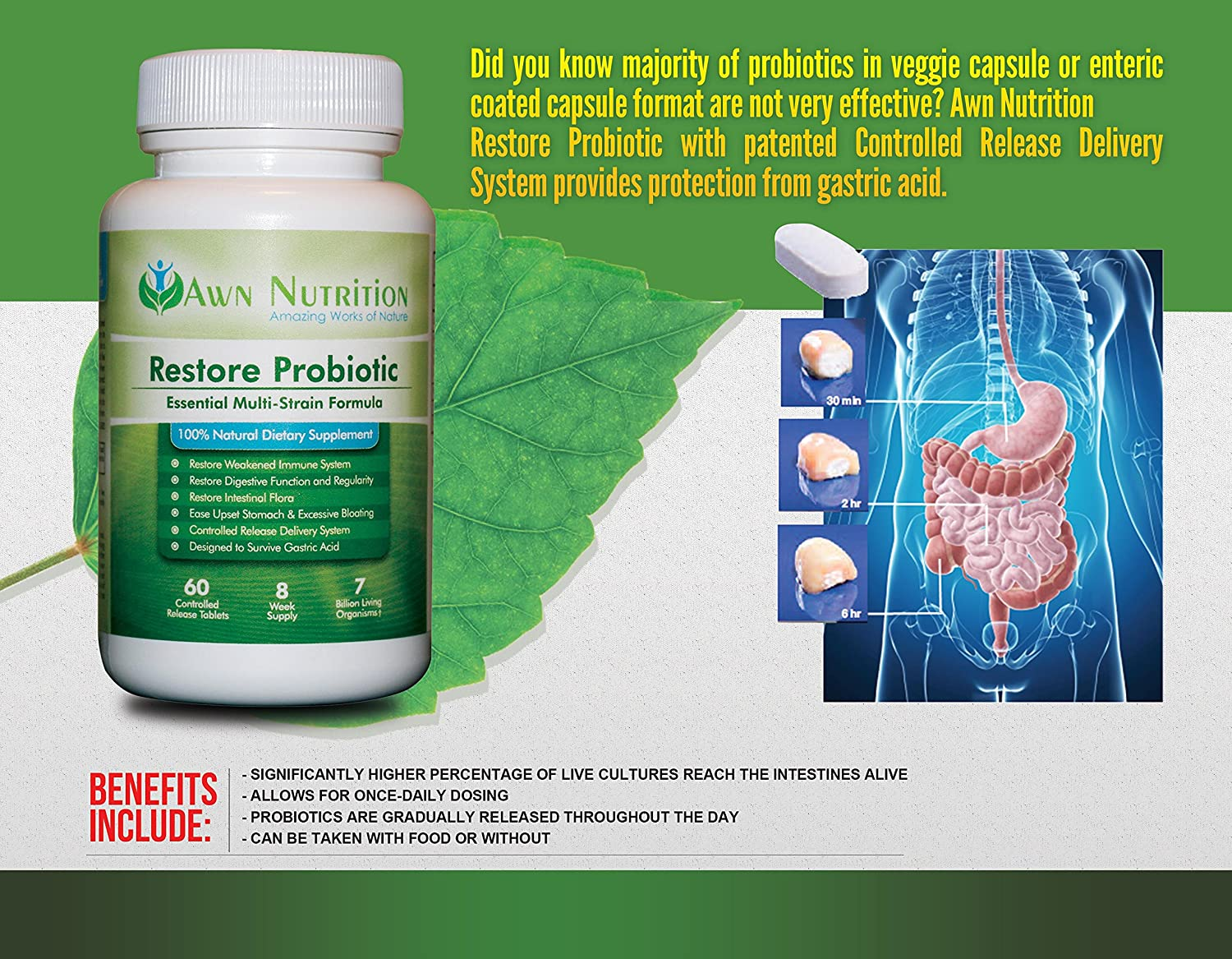 Amazon.com: Awn Nutrition Restore Probiotic Supplement - 60 Time Release Daily Tablets with Essential Multi-Strain Formula and Patented Controlled Release ...