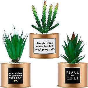 4 Inch - Artificial Succulent Potted Plants - 3 Sets - Gold Color Small Planters, Fake Plants - Decor for Home, Office, Bookshelf, Bathroom, Kitchen - Realistic Plastic Faux Plants - Indoor Decor