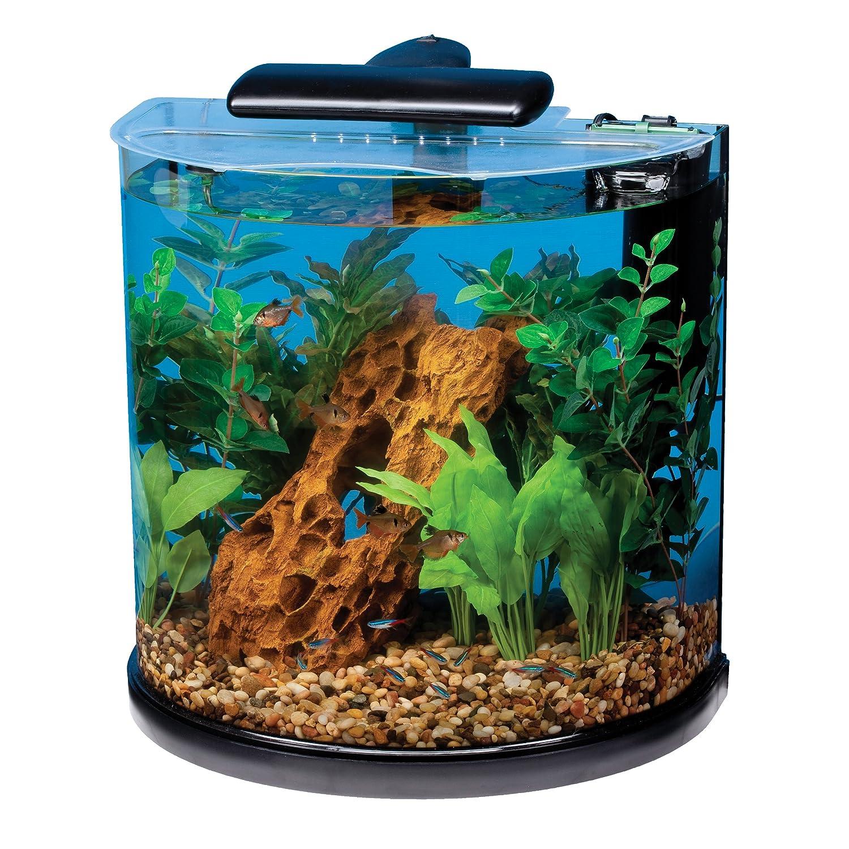 Desk aquarium fish tank - Amazon Com Tetra 29234 Half Moon Aquarium Kit 10 Gallon Pet Supplies
