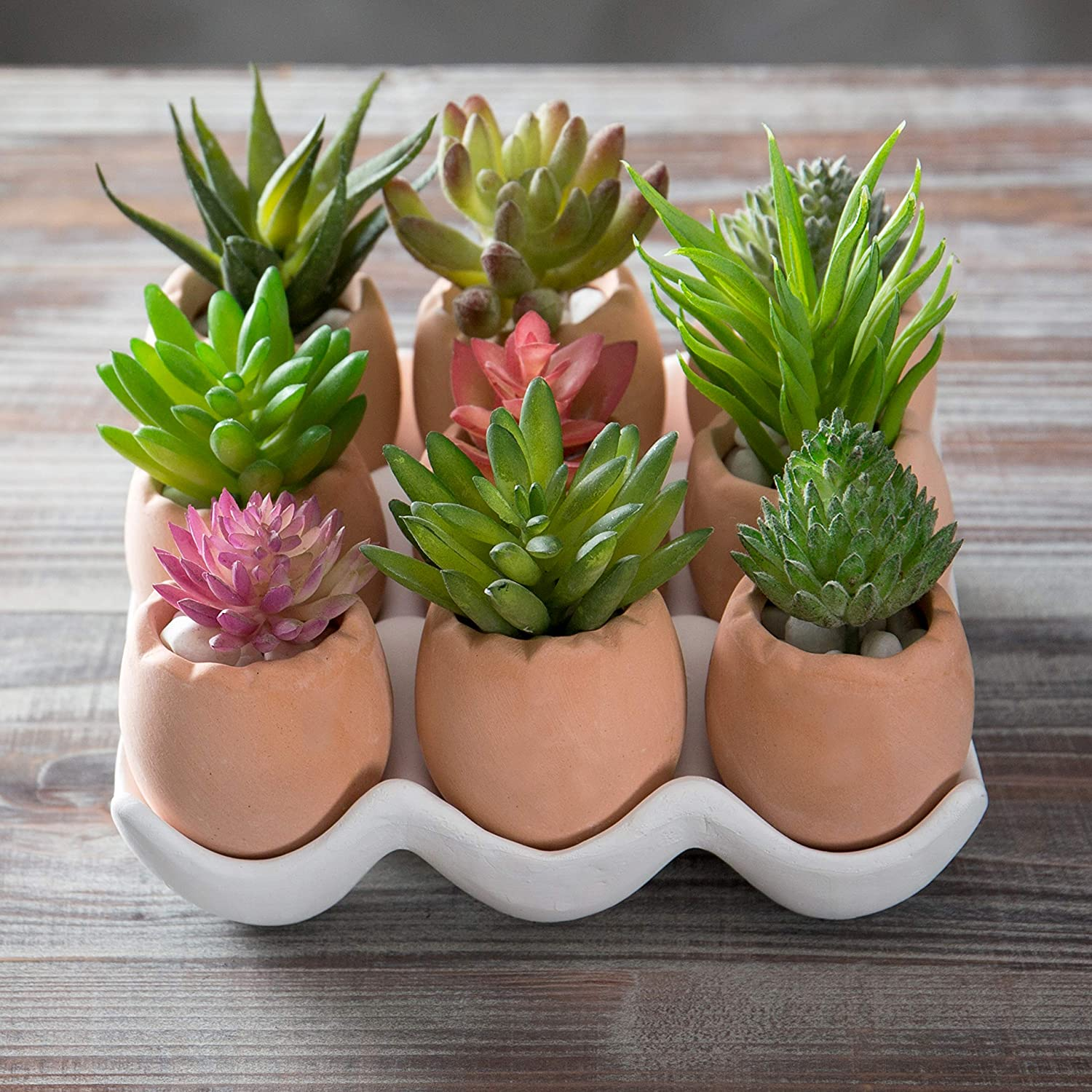 Darling Brown Eggs Ceramic Succulent Planters