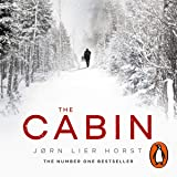 The Cabin: The Cold Case Quartet, Book 2