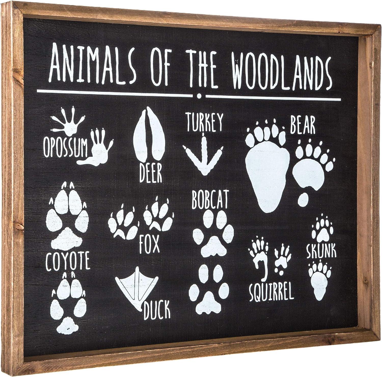 Amazon Com Hobby Lobby Animals Of The Woodlands Tracks Wood Wall Decor Home Kitchen