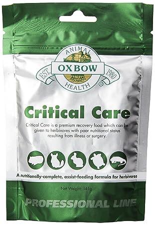 Oxbow Critical Care Pet Suplemento, 141 mm: Amazon.es: Productos para mascotas