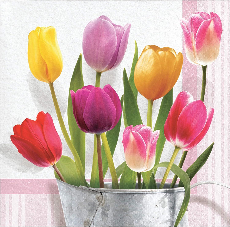 Creative Converting Springtime Tulips Beverage Napkins, 5