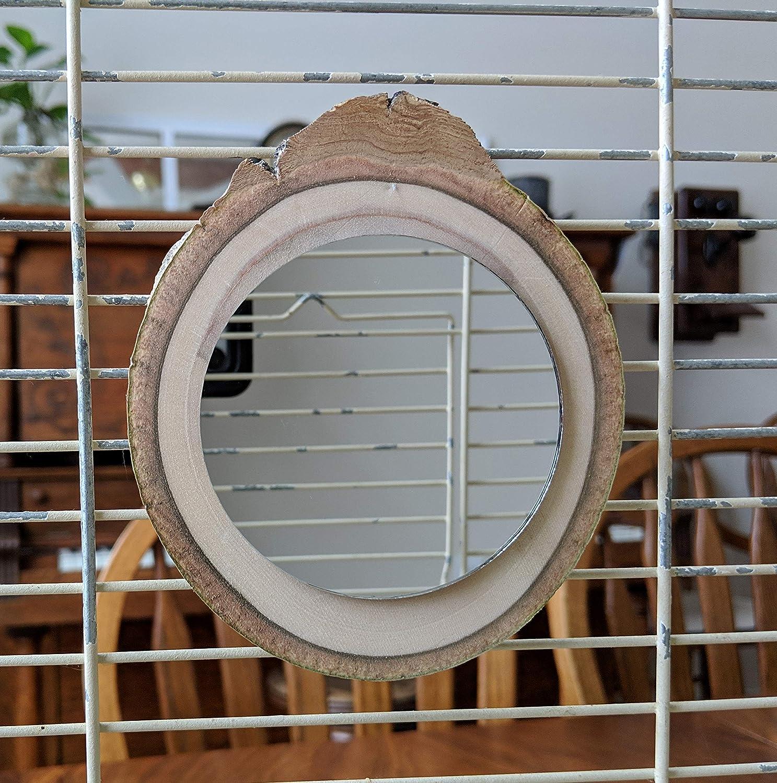 Bird Mirrors